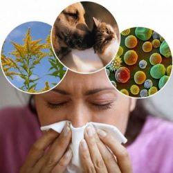 Аллергия препараты купить, профилактика, симптомы аллергии