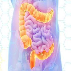 Атония кишечника препараты купить, профилактика, симптомы атонии