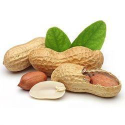 АРАХИС препараты купить, цена, полезные свойства арахиса, применение