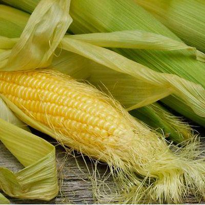 Кукурудзяні рильця