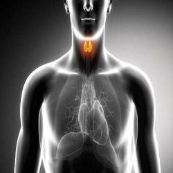 Тиреотоксикоз препараты купить, профилактика, симптомы тиреотоксикоза