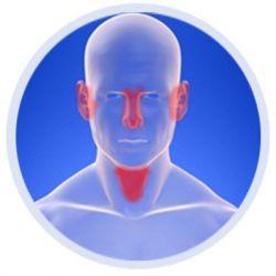 Болезни горла, носа препараты купить, профилактика, симптомы