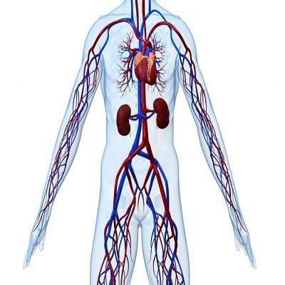Нарушение периферического кровообращения