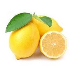 Лимон Цедра препараты купить, цена, полезные свойства Лимонной Цедры