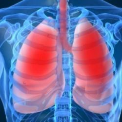 Болезни легких препараты купить, профилактика, симптомы
