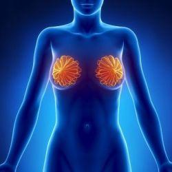 Болезни молочной железы препараты купить, профилактика, симптомы