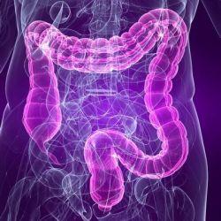 Болезни толстого кишечника препараты купить, профилактика, симптомы